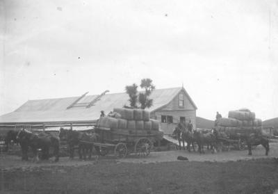 Woolshed, Elmshill, Waipawa