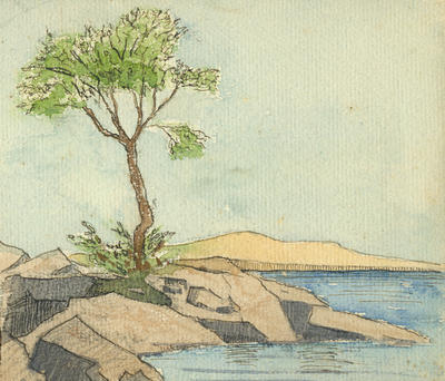 Untitled - tree and seascape