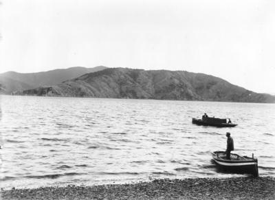 Pickersgill Island, Queen Charlotte Sound