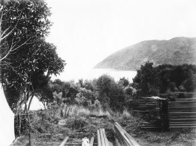 Wharehunga Bay, Queen Charlotte Sound