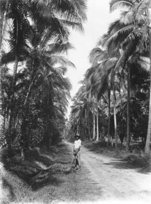 Road, Samoa; Duncan, Russell