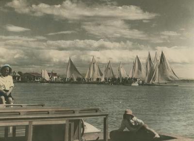 Napier Sailing Club