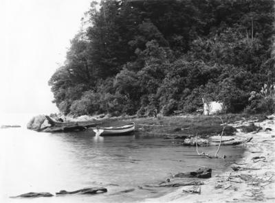 Lake Waikaremoana, Hawke's Bay
