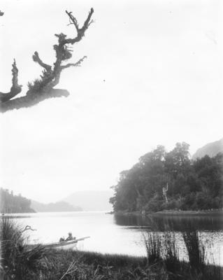 Mōkau Inlet, Lake Waikaremoana, Hawke's Bay