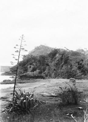 Rangihoua, Bay of Islands