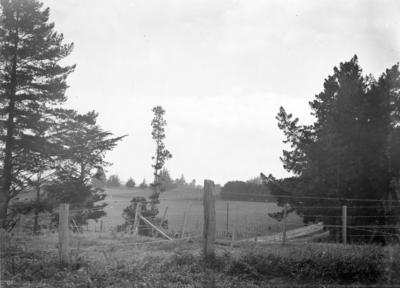 Gate Pā, Pukehinahina
