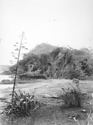 Rangihoua Pā, Northland