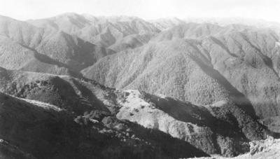 Kaweka Ranges, Hawke's Bay