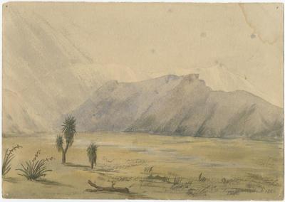 Canterbury (Plain and Mountains)