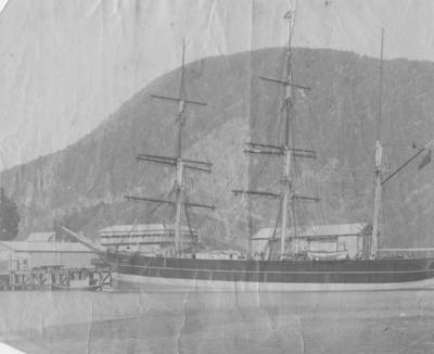 Barque, Picton Harbour