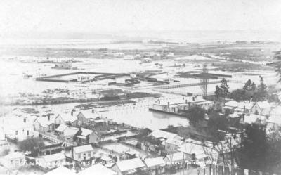 Flooding, Napier