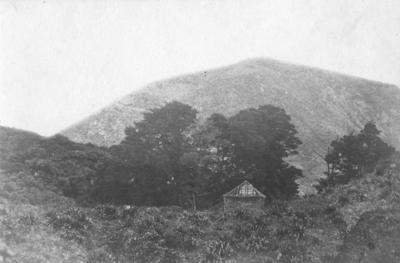 Kuripapango Valley, Hawke's Bay