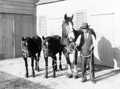 Mare and Foals with Mr Neal; Sorrell, Charles Hudson Cunningham