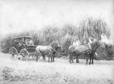 Buggy, unidentified location