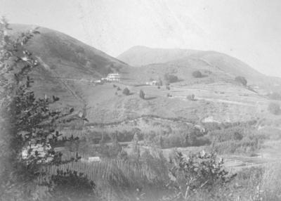 View near Nelson