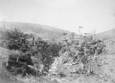 Old Porirua Road, near Wellington