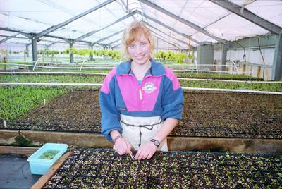 Rona Koster, Plant Propagation Laboratories, Havelock North