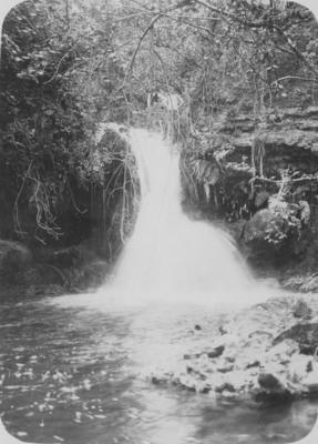 Upper Tangoio Falls