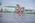 Glen Harkness, Hawke's Bay Secondary Schools Triathlon Championships
